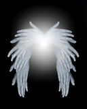 Angel Wings Arkivbilder