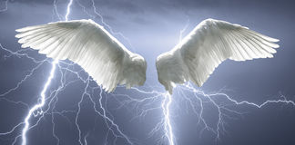 Angel wings with background made of sky and lightning.  royalty free stock images