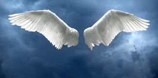 Angel wings with stormy sky background. Angel wings with background made of stormy sky and clouds royalty free stock photos