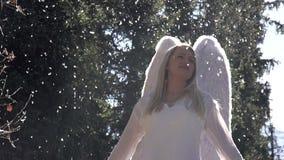 Angel Wings Beat stock video footage