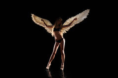 Angel with wings on black background. Angel with white wings on black background Stock Photo