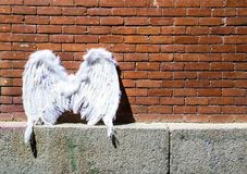 Angel wings on brick wall background. Cityscape of Madrid. stock photography