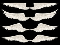 Angel Wings. Digital illustration of angel wings. A Clipping Path is included. They are ready to be composited with other images Stock Photography