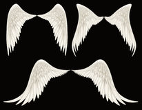 Angel Wings. Digital illustration of angel wings. A Clipping Path is included. They are ready to be composited with other images Stock Photos