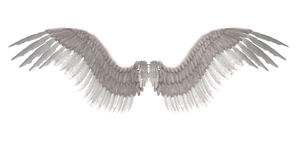 Angel wings. Digitally rendered image of white feathered angel wings Stock Photos