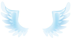 Angel wings. For every occasion Vector Illustration