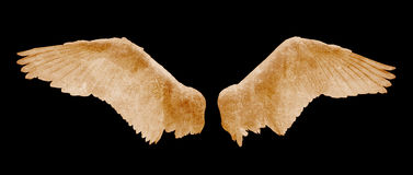 Angel wings with grunge texture on black background royalty free stock photos
