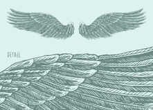 Angel Wings Illustration, Engraved sketch Vector Royalty Free Stock Images
