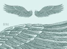 Angel Wings Illustration, Gegraveerde schetsvector Royalty-vrije Stock Afbeeldingen