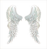Angel wings. Illustration of angel wings isolated on white Stock Image