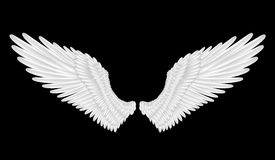 Angel wings. Illustration of white angel wings isolated royalty free illustration