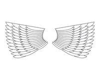 Angel Wings Isolated Asa da pena branca do pássaro ilustração royalty free