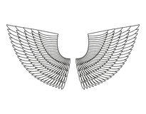 Angel Wings Isolated. White Feather wing of bird Royalty Free Stock Photo