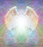 Angel Wings on multicolored matrix web. Pair of Angel Wings on a multicolored matrix web background with a bright white burst of light between the wings Stock Images