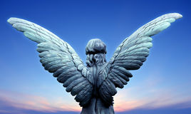 Angel wings over clear sky. Beautiful angel on blue sky background with copy space Royalty Free Stock Images
