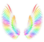 Angel wings. In rainbow color vector illustration