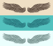 Angel wings set illustration, engraved style, hand drawn Stock Images