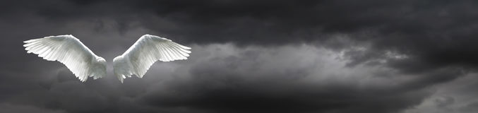 Angel wings with stormy sky background. Angel wings with background made of stormy sky and clouds royalty free stock photo