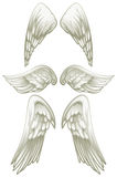 Angel wings on white Stock Photo