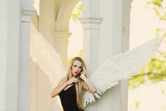 Angel with wings Stock Images
