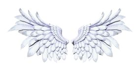 Angel Wings, Wing Plumage blanc sur le fond blanc Images stock