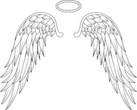 Angel wings for you design Royalty Free Stock Photo