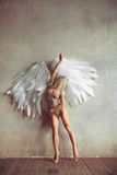Angel woman stock photo