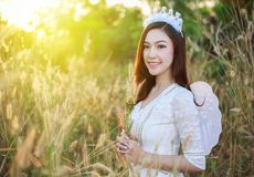 Angel woman in a grass field with sunlight. Beautiful angel woman in a grass field with sunlight Royalty Free Stock Images