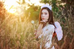 Angel woman in a grass field with sunlight. Beautiful angel woman in a grass field with sunlight Stock Photography