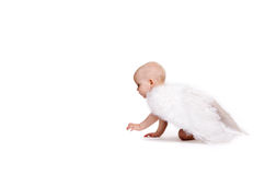 An Angel. Wonderful baby girl on the floor with angel feathers on her back Stock Image