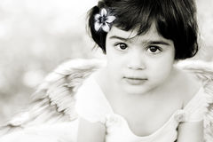 Angel9. Closeup of a child wearing angel wings Stock Photography