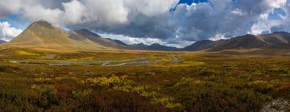 Angelcomb μέγιστο Yukon Στοκ Εικόνα