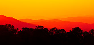 Angeles forest. Sunset over Angeles forest mountains Royalty Free Stock Photography
