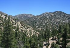 Angeles Forest High Country Στοκ Εικόνα