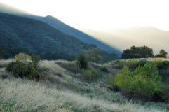 Angeles lasu państwowego pogórzy Złota godzina fotografia stock