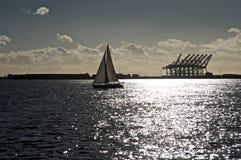 angeles los около гаван яхты Стоковые Фотографии RF