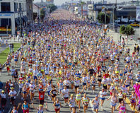 angeles los maraton Royaltyfria Foton