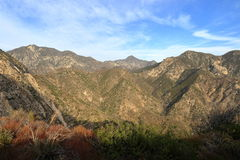 Angeles national forest. A view of Angeles national forest along highway 2 Stock Photos