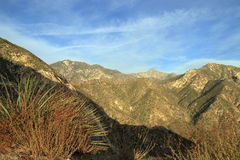 Angeles national forest. A view of Angeles national forest along highway 2 Stock Image