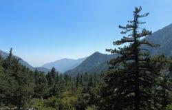 Angeles National Forest zoals die van Onderstel Baldy, San Gabriel Mountains, Californië wordt gezien Stock Foto's