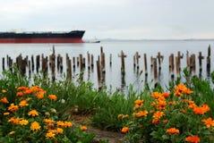 Angeles portuária Foto de Stock Royalty Free