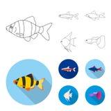 Angelfish, błonie, barbus, neonowy Łowi ustalone inkasowe ikony w konturze, mieszkanie symbolu zapasu ilustraci stylowa wektorowa ilustracji