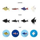 Angelfish, błonie, barbus, neonowy Łowi ustalone inkasowe ikony w kreskówce, czerń, mieszkanie symbolu zapasu stylowa wektorowa i ilustracji