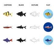 Angelfish, błonie, barbus, neonowy Łowi ustalone inkasowe ikony w kreskówce, czerni, zarysowywa, mieszkanie symbolu stylowy wekto ilustracji