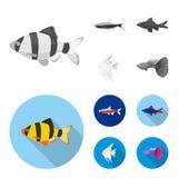 Angelfish, błonie, barbus, neonowy Łowi ustalone inkasowe ikony w monochromu, mieszkanie symbolu zapasu ilustraci stylowa wektoro royalty ilustracja