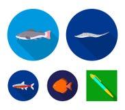 Angelfish, błonie, barbus, neonowy Ryba ustalone inkasowe ikony w mieszkanie stylu wektorowym symbolu zaopatrują ilustracyjną sie Obrazy Royalty Free