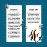 Angelfish on a blue background with card for text Royalty Free Stock Photo