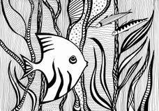 Angelfish między algami pod wodą w morzu Zdjęcie Stock