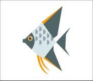 Angelfish mieszkania ilustracja Fotografia Royalty Free