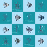 Angelfish Pattern Stock Photography